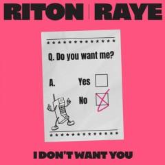 I Don't Want You - Riton & RAYE