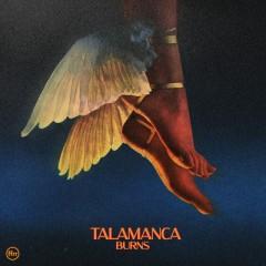 Talamanca - Burns