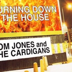 Burning Down The House - Tom Jones with The Cardigans