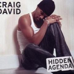 Hidden Agenda - Craig David