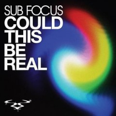 Could This Be Real - Sub Focus
