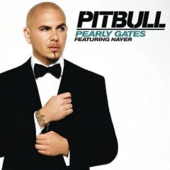 Pearly Gates - Pitbull & Nayer