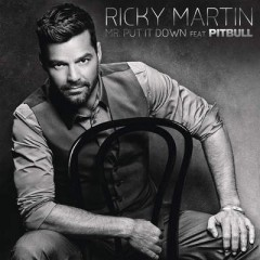 Mr Put It Down - Ricky Martin & Pitbull