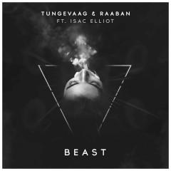 Beast - Tungevaag & Raaban feat. Isac Elliot