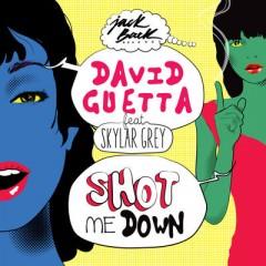 Shot Me Down - David Guetta feat. Skylar Grey