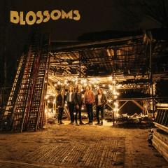 At Most A Kiss - Blossoms