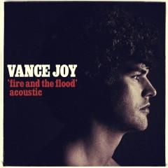 Fire And The Flood - Vance Joy