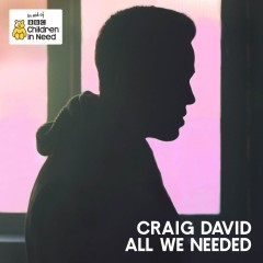 All We Needed - Craig David