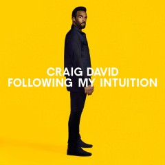 Change My Love - Craig David