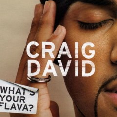 What's Your Flava - Craig David