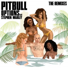 Options - Pitbull feat. Stephen Marley